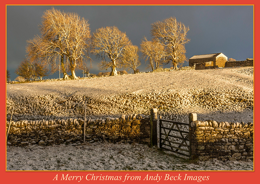 Andy Beck Images Christmas