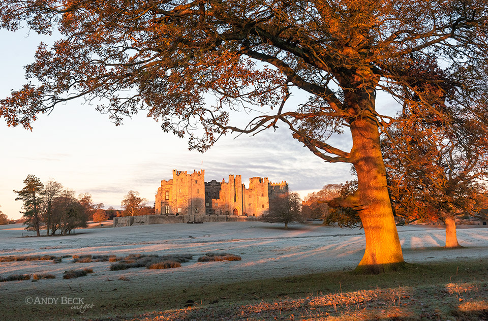 Raby Castle frosty morning