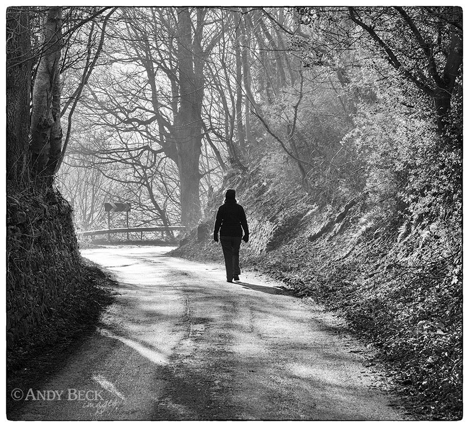 Walking in the lane