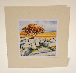 Limestone Pavement card