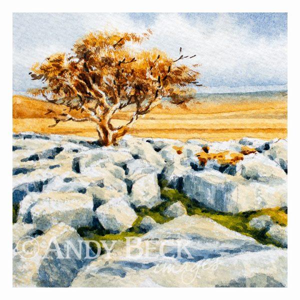 Limestone pavement