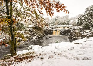 Low Force Greeting card
