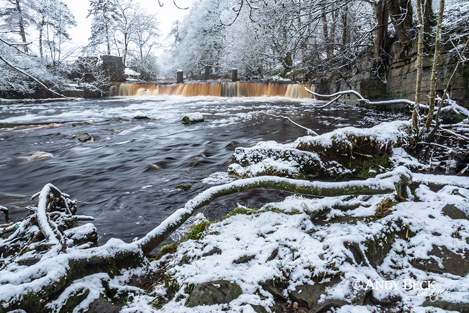 Winter at Mill Force