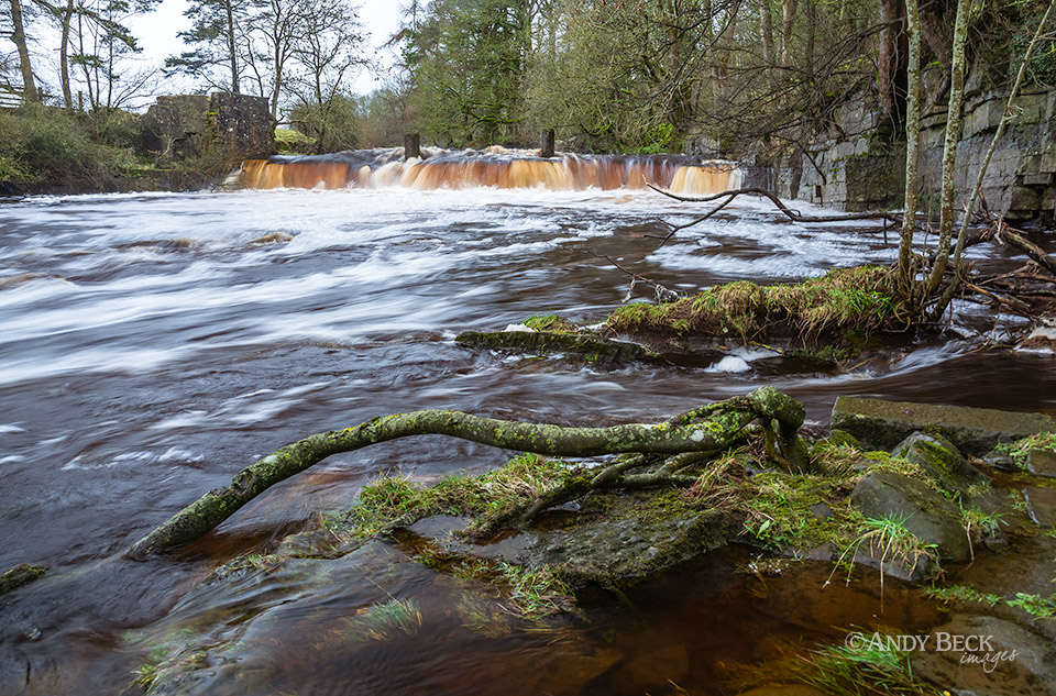 Mill Force in full flow
