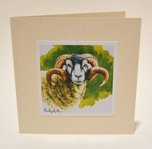 Swaledale tup card