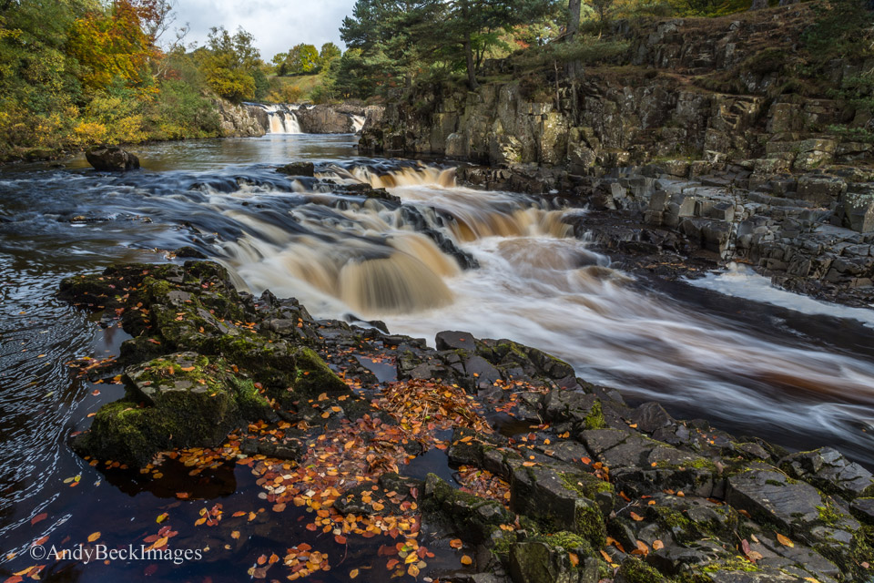 Autumn at Low Force