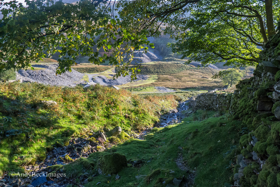 The path that leads up to Rainsbarrow crag from the cottage
