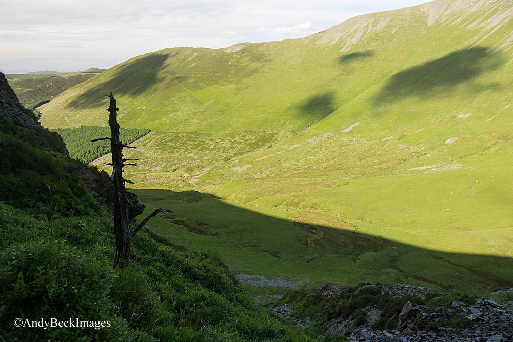 Hobcarton valley and Hobcarton End