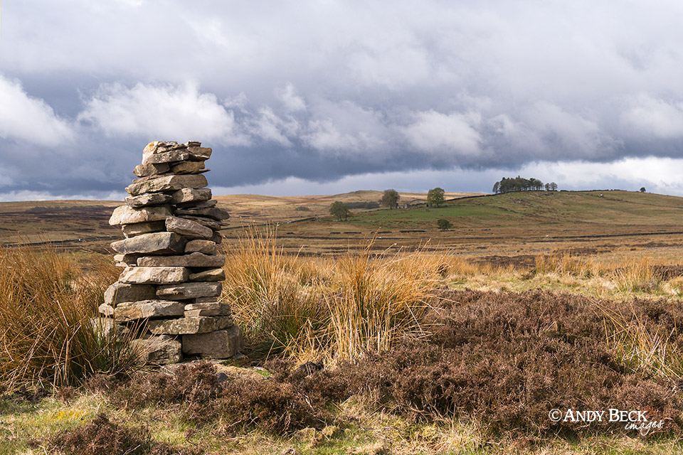 Lamb Hill, Cotherstone Moor