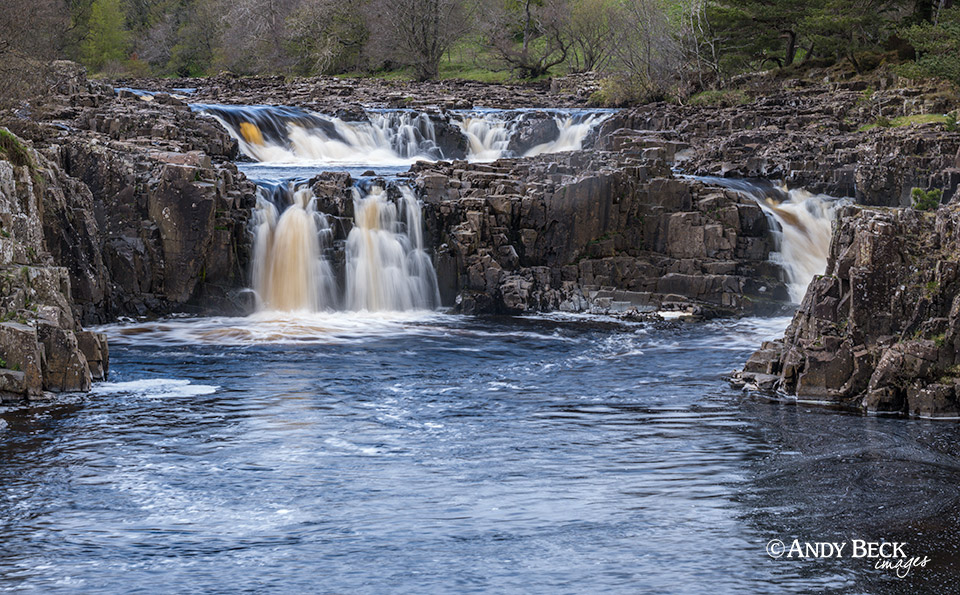 Low Force view