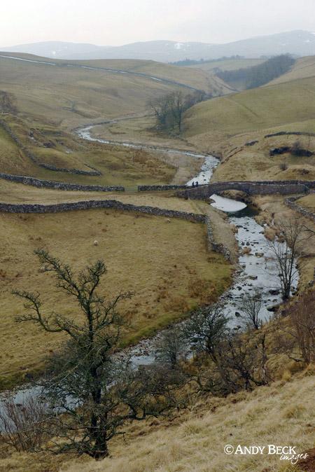 Smardale gill and bridge