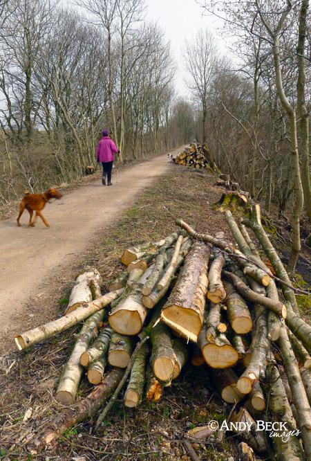 Smardale reserve walk