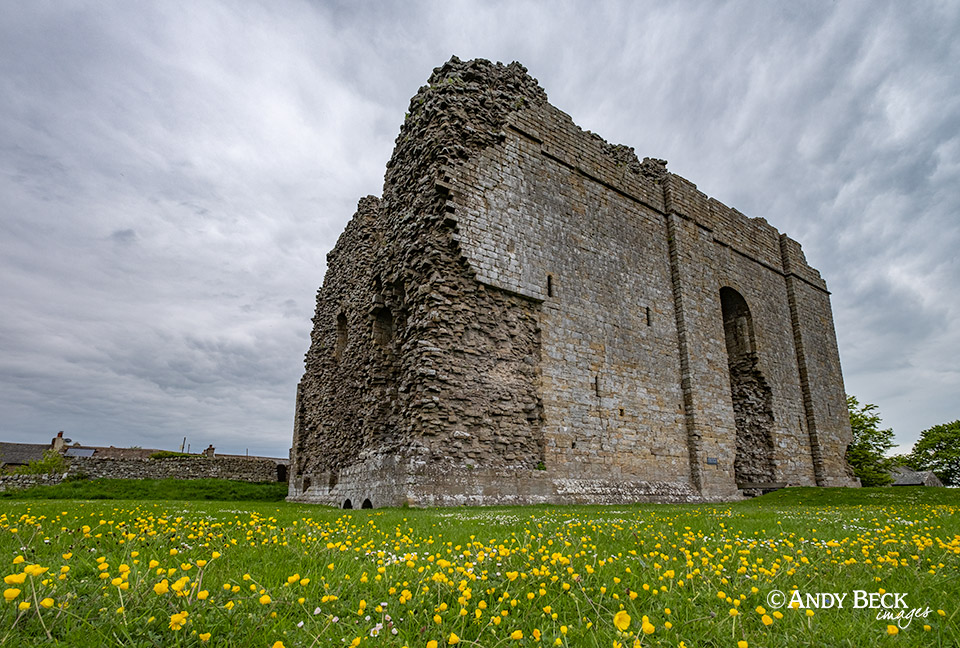 Bowes Castle and buttercups