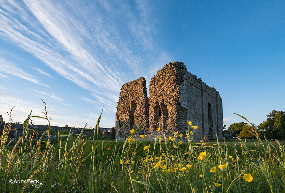 Bowes Castle flowers