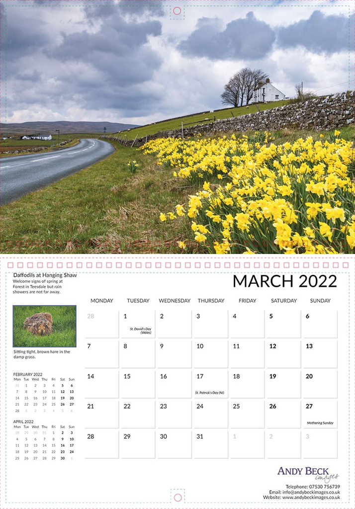 Teesdale 2022 March